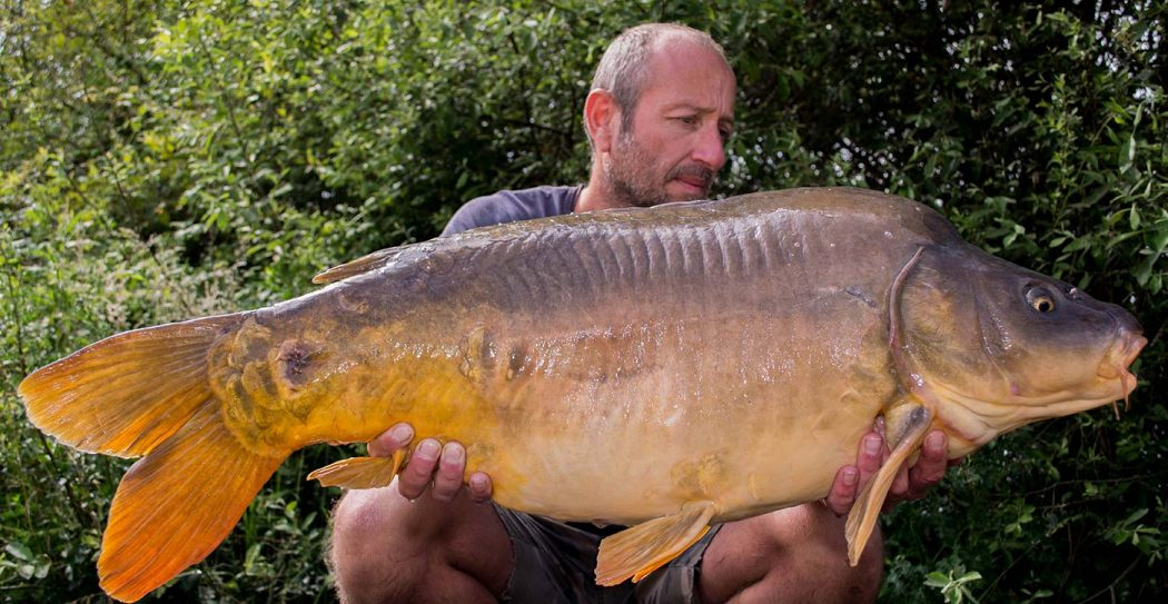 BTW Revealed – Livardière – The Carp Specialist