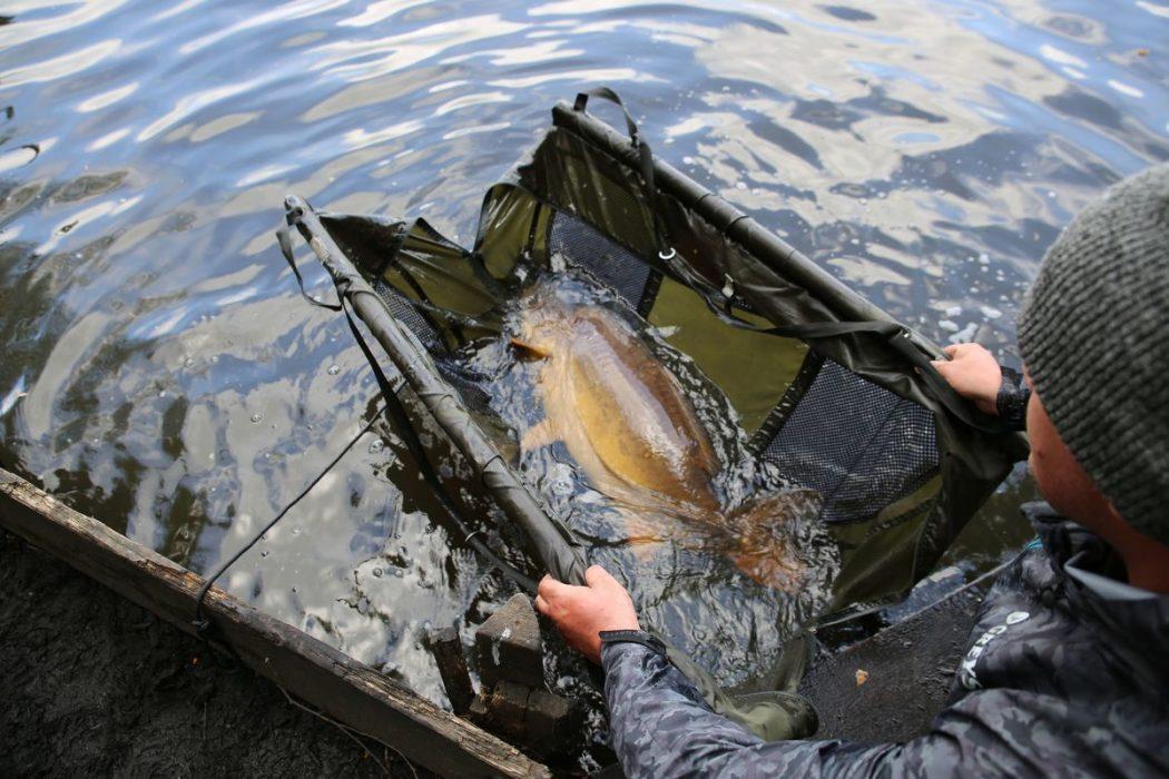 Veilig omgaan met de vis dankzij de JRC Cocoon Carp Care range