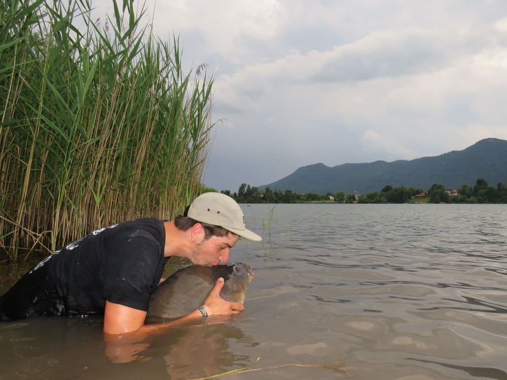 Vijf tips om gevangen vissen rustig te houden